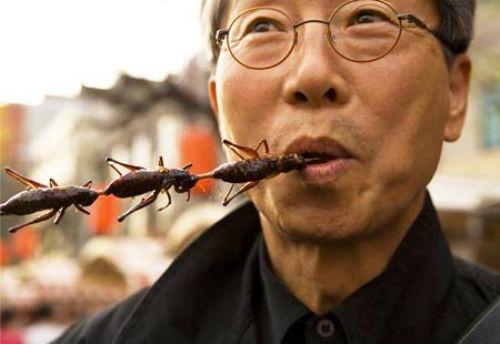 la-banane-qui-parle-mange-insectes-12