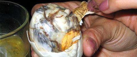 labananequiparle-aliment-terrifiant-duckfetus1