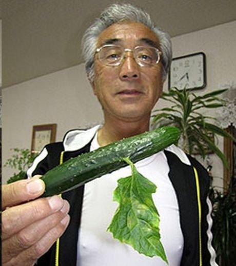 labananequiparle-fukushima-legumes3