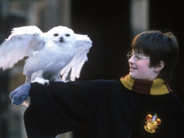 labananequiparle-harry-potter-anecdotes15