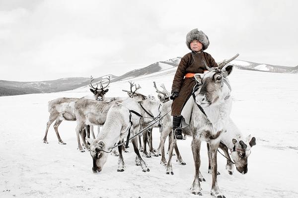 labananequiparle-Tsaatan (Mongolie)2