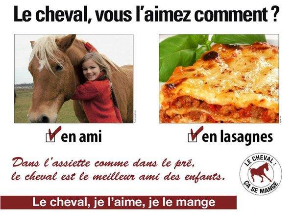 labananequiparle_cheval-lasagnes-hara-kiri-