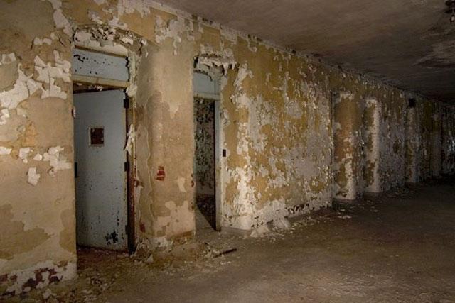 labananequiparle-asiles-abandonnes-Danvers-4