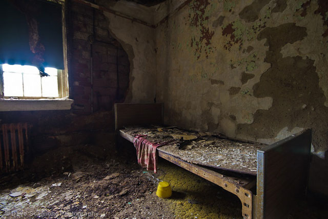 labananequiparle-asiles-abandonnes-Trenton-1