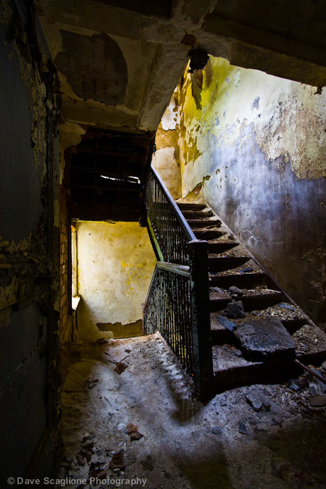 labananequiparle-asiles-abandonnes-Trenton-7