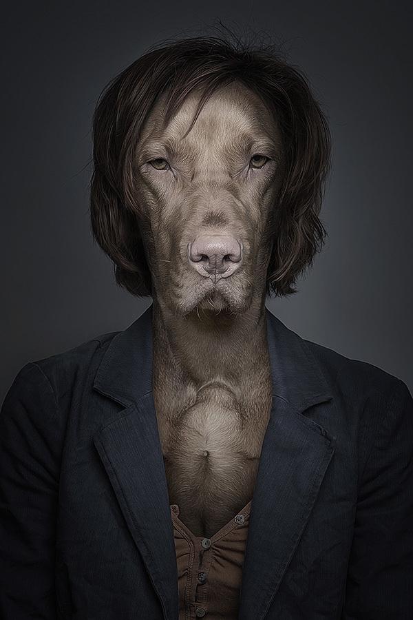 labananequiparle-tel-maitre-tel-chien-13