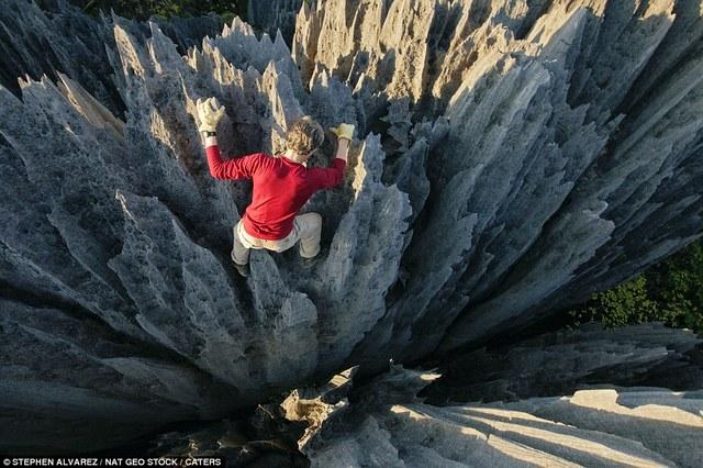 Labananequiparle-Forêt de pierres-Madagascar2
