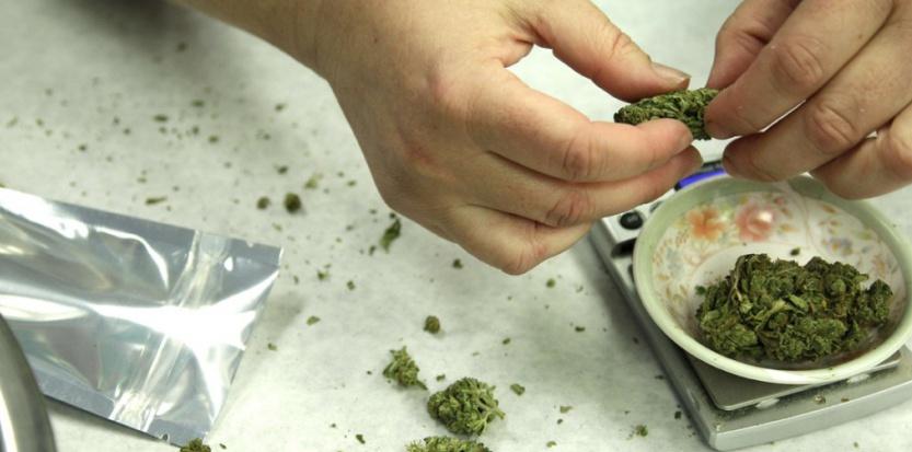 labananequiparle-eaze-l-application-qui-livre-du-cannabis-en-10-minutes