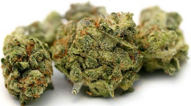 labananequiparle-eaze-l-application-qui-livre-du-cannabis-en-10-minutes2