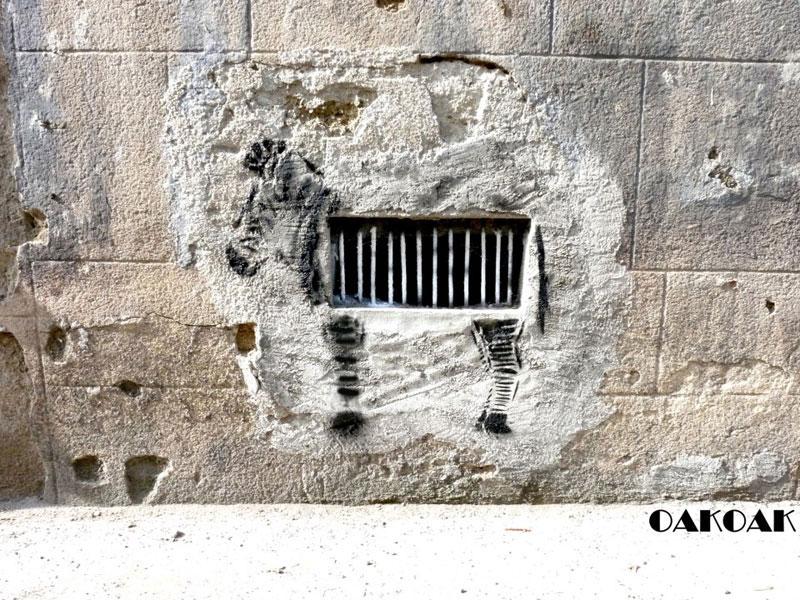 labananequiparle-oak-oak-street-art-zebre