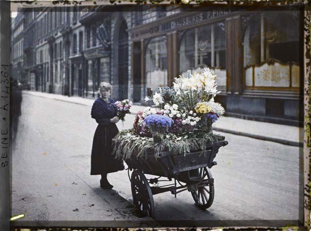 labananequiparle-marchande-fleur