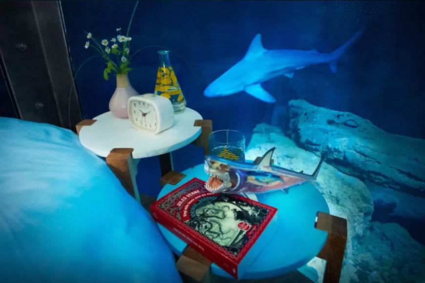 Passez-une-nuit-dans-l'Aquarium-de-Paris-au-milieu-de-35-requins-3