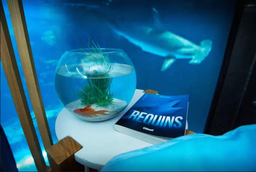 Passez-une-nuit-dans-l'Aquarium-de-Paris-au-milieu-de-35-requins-4