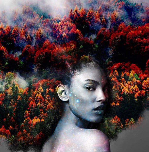 coupes-afro-oeuvres-art-12
