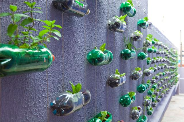 decouvrez-les-jardins-les-plus-etranges-et-les-plus-magnifiques-jardins-du-monde28