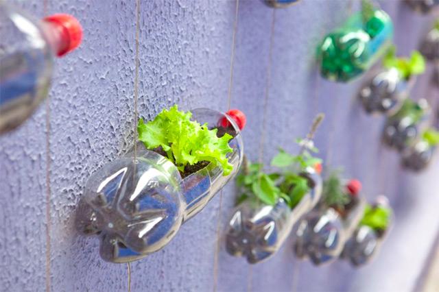 decouvrez-les-jardins-les-plus-etranges-et-les-plus-magnifiques-jardins-du-monde30