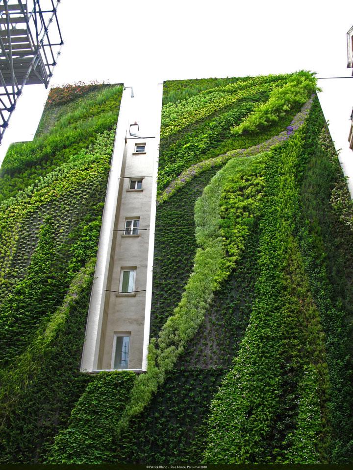 decouvrez-les-jardins-les-plus-etranges-et-les-plus-magnifiques-jardins-du-monde31