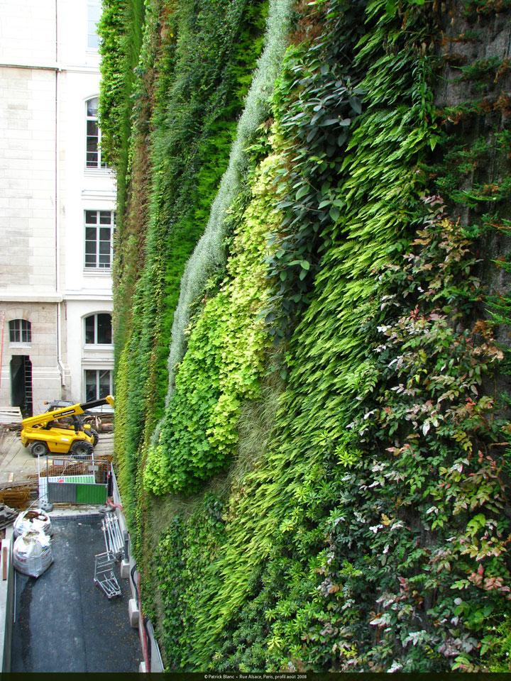 decouvrez-les-jardins-les-plus-etranges-et-les-plus-magnifiques-jardins-du-monde32