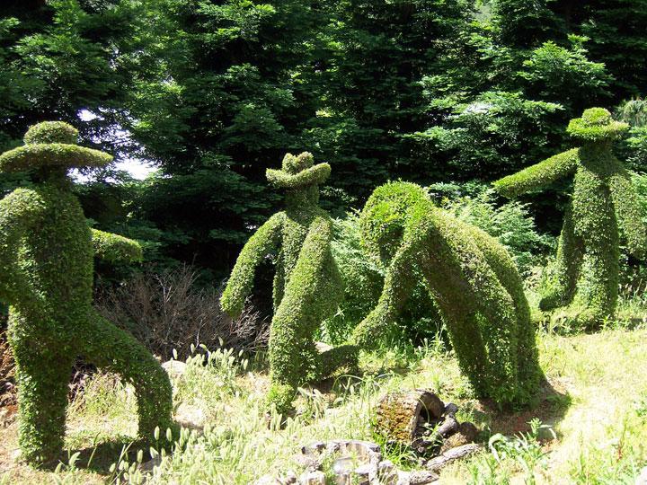 decouvrez-les-jardins-les-plus-etranges-et-les-plus-magnifiques-jardins-du-monde38