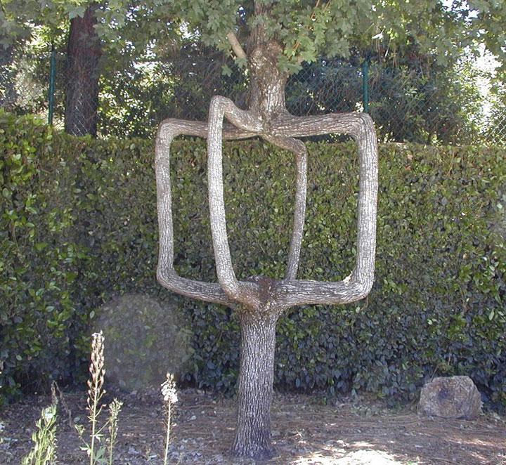 decouvrez-les-jardins-les-plus-etranges-et-les-plus-magnifiques-jardins-du-monde40