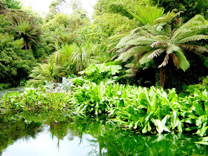 decouvrez-les-jardins-les-plus-etranges-et-les-plus-magnifiques-jardins-du-monde5