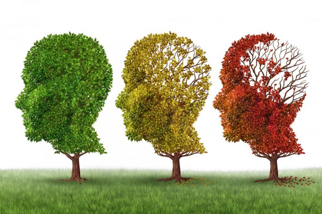 les-bons-gestes-a-adopter-pour-prevenir-la-maladie-dalzheimer