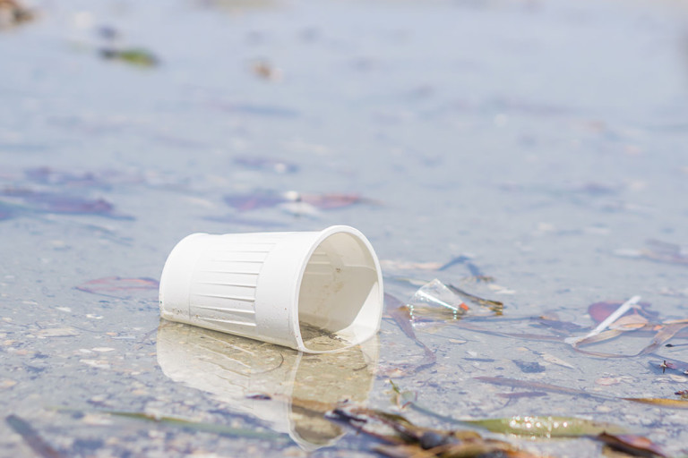 verre-plastique-768x512